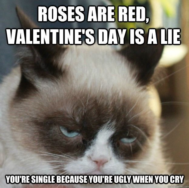 Valentine Day Memes photo 12