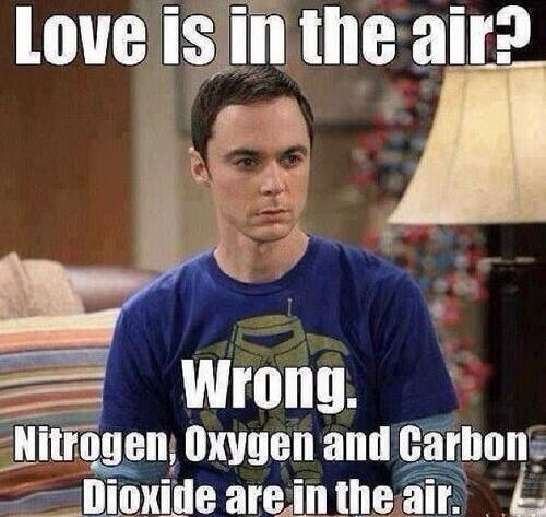 Valentine Day Memes photo 4